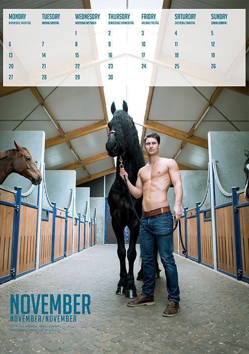 horse and hunk kalender 2017
